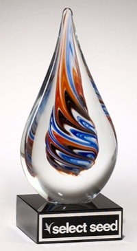 Color Crystal Clear Drop Trophy Award