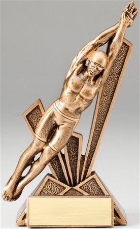 Swimming Male Bronze Checkmate Resin Trophy Award - 6 1/2''